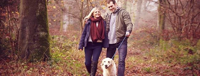 Frau und Mann spazieren mit Hund, als Beispiel für Date Ideen
